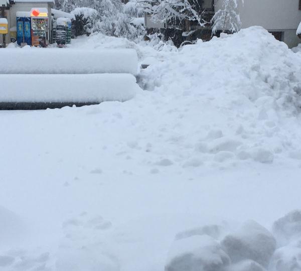 Chocnroll versinkt im Schnee